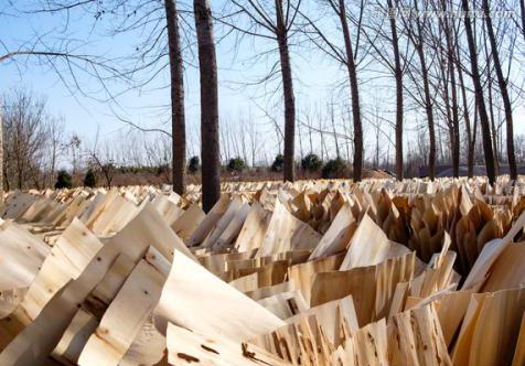 人造板工业现行环保标准存在的主要问题